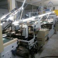 Bobst Domino 110 m2 (2)